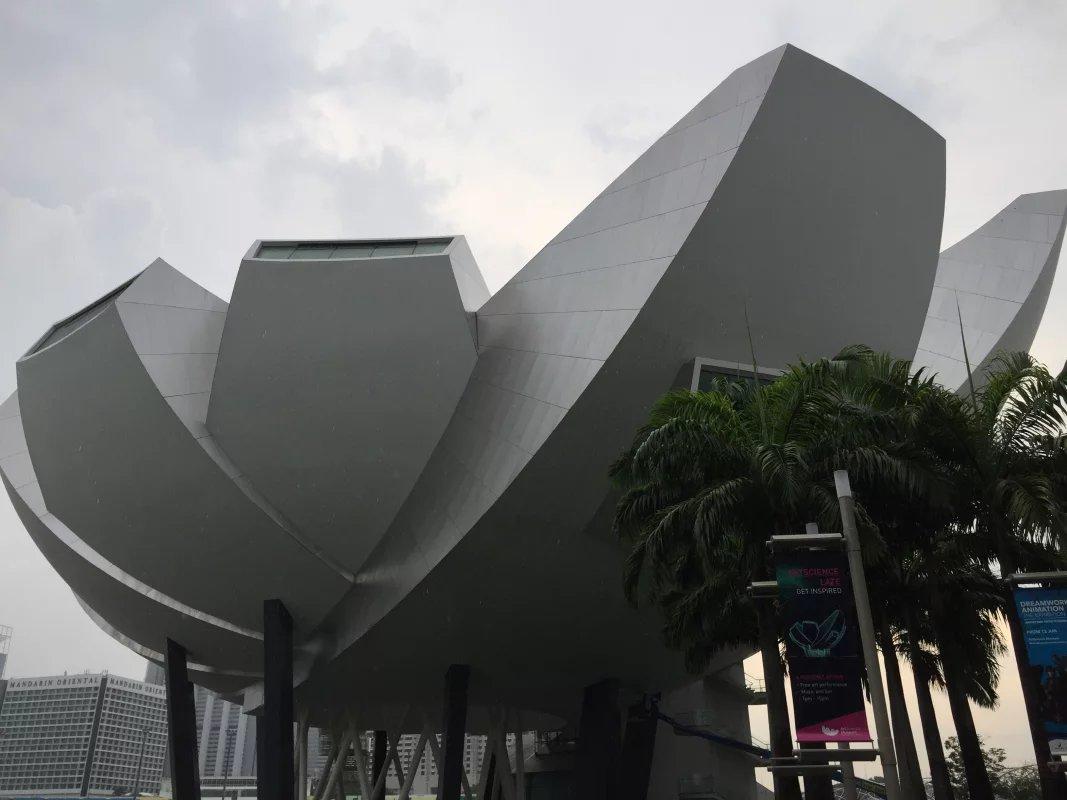 在新加坡学习石油工程专业的申请计划是什么?